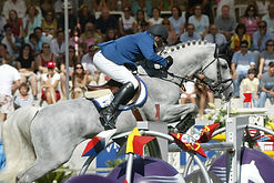 Ludo Philippaerts and Parco_high.jpg