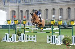 Jumping Chantilly