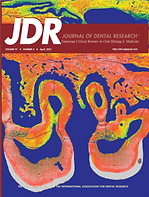 jdr cover.png