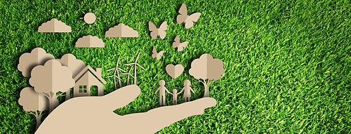 eco-friendly green carton