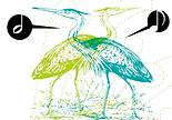 Oiseau.png