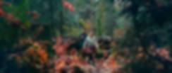 Autumn Falls_1.5.1.png