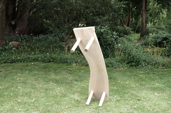 Bench | Australian White Beech The form of timber reveals it's best use  2020