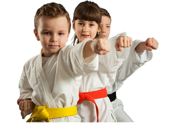 Karate-6-PNG-e1511399594176-1024x782.png