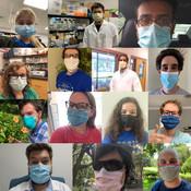 wear masks.jpg