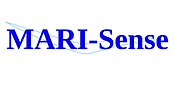 [Shared] MARI-Sense Logo (1) (1).png