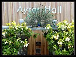 arboretumayreshall.jpg