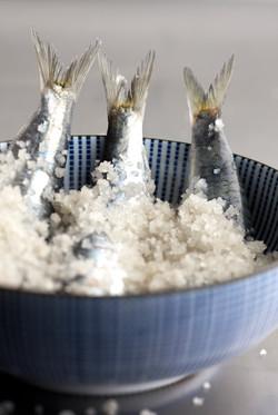 celia-goumard-photographe-culinaire-sard
