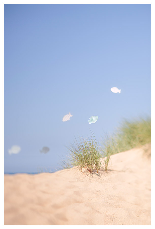 celia-goumard-photographe-poissons2