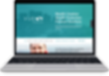 Web design Service Financial