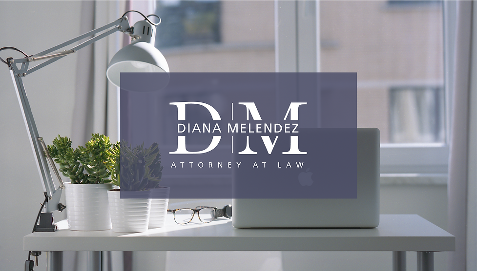 Diana Melendez Logo Design Banner Image.
