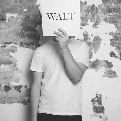 WALT.jpg