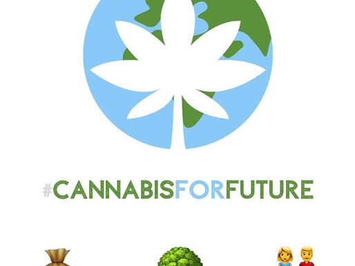 Cannabis For Future
