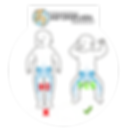 Woombie kundak bebeklerin sağlıklı kalça gelişimini destekler