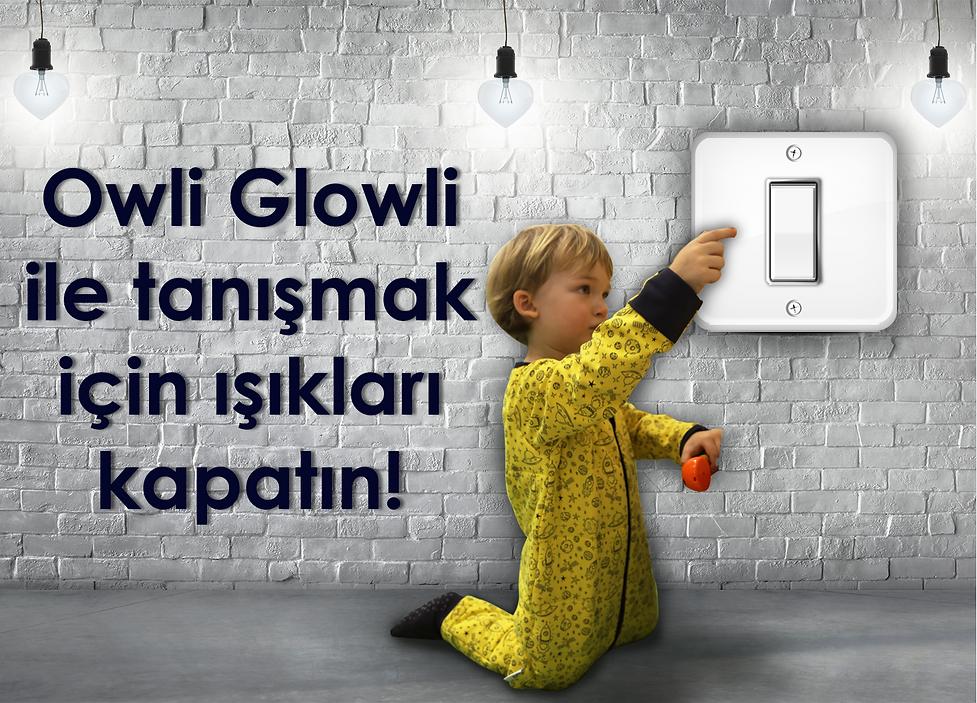 Owli Glowli Website Night.png