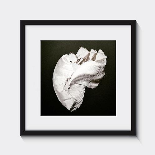 Inside the heart collage, wnętrze