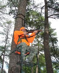 Hunters Reminded to Practice Treestand Safety