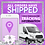 Thumbnail: DIY Purple Shipped Premade Flyer