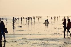 Java's Beach
