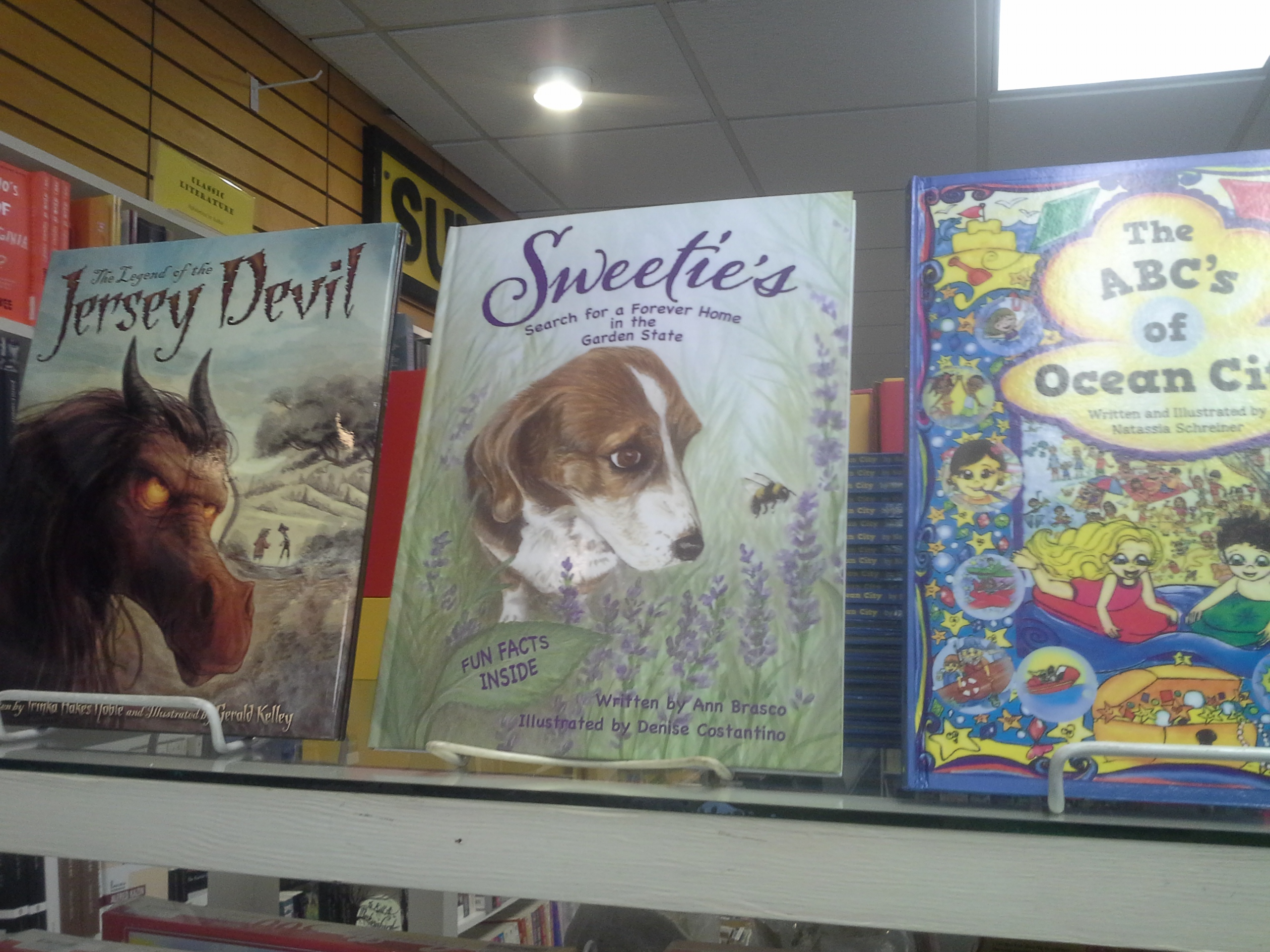 Local author children's books