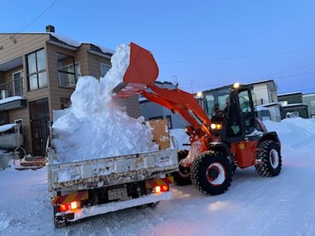 個人宅排雪作業業務
