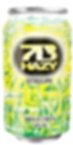 7BHazySingleCan.jpg