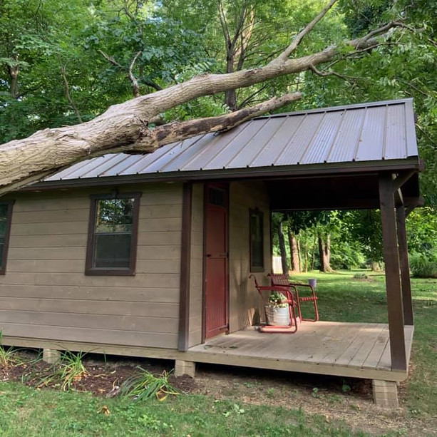 24/7 Emergency Tree Serivces