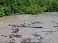 flood0507 026.JPG