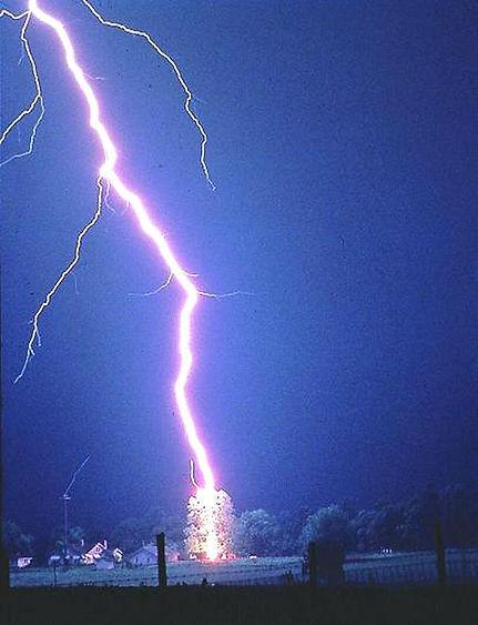 Lightning hits tree.jpg