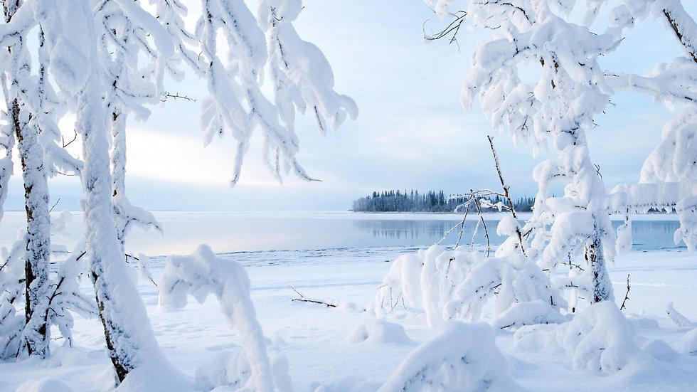 Новогодние приключения на Русском Севере 31.12 - 02.01 (3 дня)