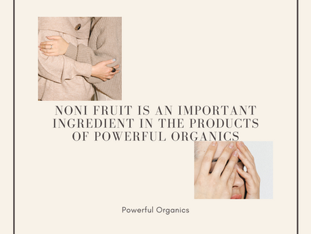 NONI FRUIT IS AN IMPORTANT INGREDIENT IN THE PRODUCTS OF POWERFUL ORGANICS