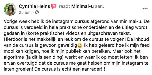 instagramcursus_minimal-u_recensie_cynth