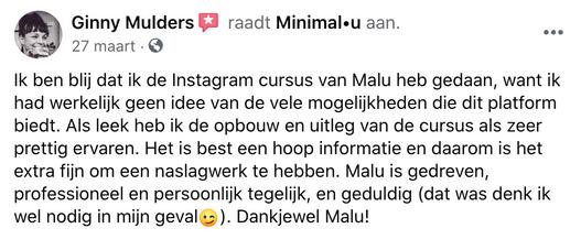 instagramcursus_minimal-u_recensie_ginny