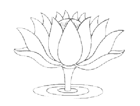 Lotus Graphic-3.png