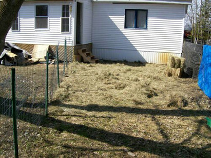 THE FENCE SAGA - How my dogs outsmarted me and helped me build a better fence