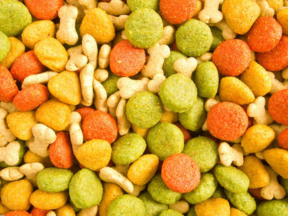 Is Grain-Free Dog Food Better for My Dog?