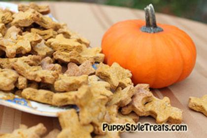 Our pumpkin treats