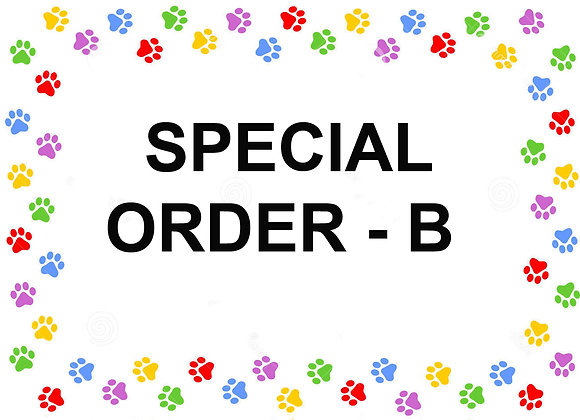 SPECIAL ORDER - B