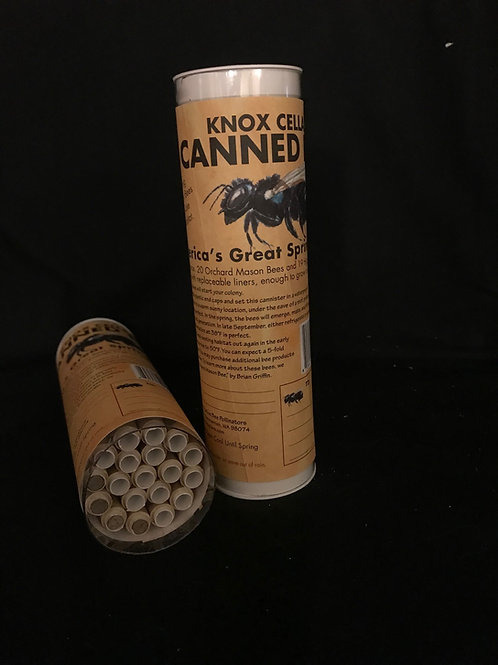 Canned Mason Bees Starter Set