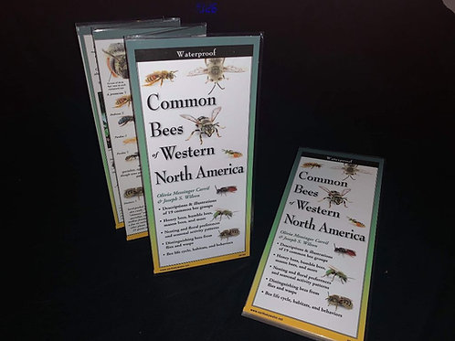 Common Bees of Western North America Brochure