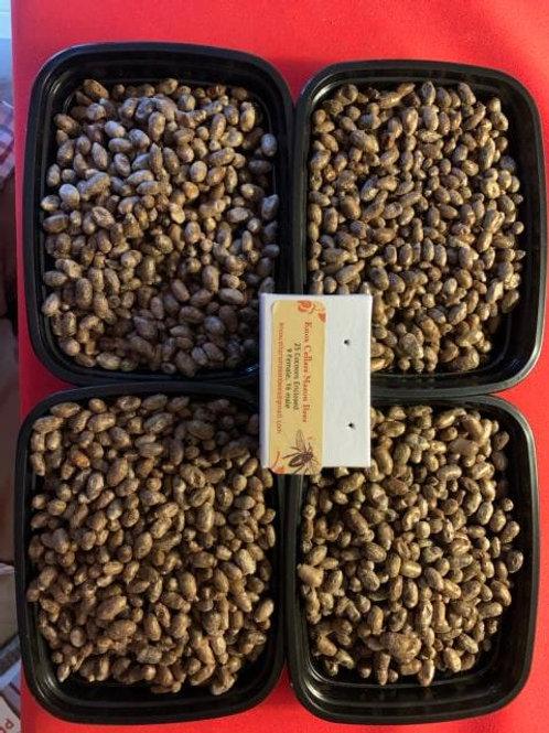 Orchard Mason Bees-  25 Loose Cocoons