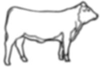 Beef-rendering.png