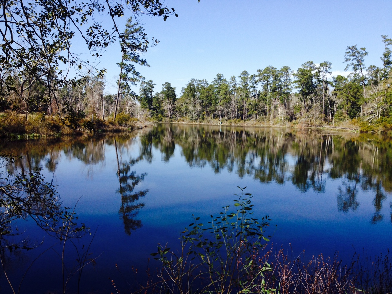 Lake from Dam 2
