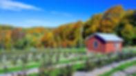 2018_farm_stand1.jpg