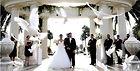 bruidsduiven.jpg