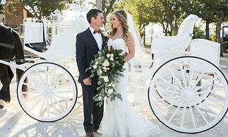 wedding-horse-carriage.jpg