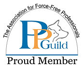 PPG-new-member-badge.jpg