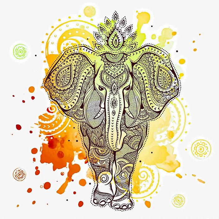 elephant_edited_edited_edited.png