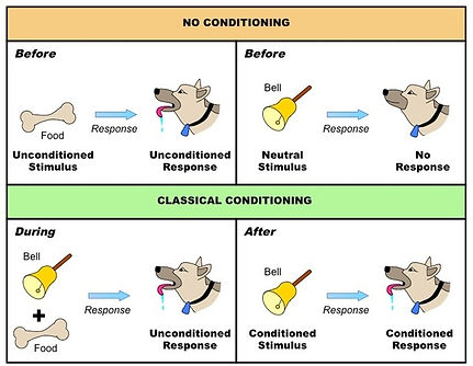 pavlov-dog-conditioning-experiment-opera