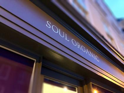 Soul Organic Branding 2018
